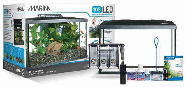 The Best 10 Gallon Fish Tanks And Kits 2018